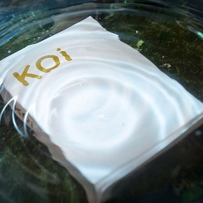 Koi V2 Playing Cards
