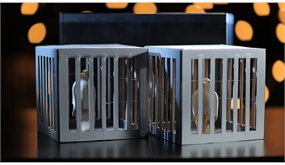 Amazing Cages from Frame - magic