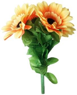 Amazing Split Sunflower - magic