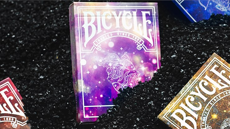 Bicycle Constellation Series  - Pisces - magic
