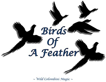 Birds Of A Feather - magic