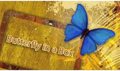 Butterfly In a Box - magic