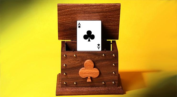 CARD IN THE AIR - magic