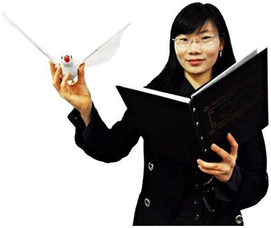 Dove & Rabbit Book - magic