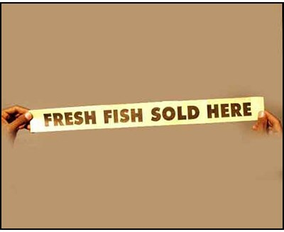 Fresh Fish Sold Here - magic