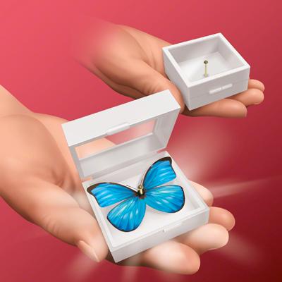 Magic Butterfly - magic