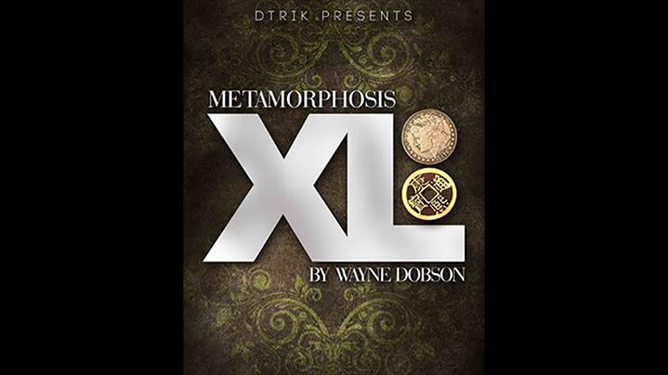 Metamorphosis XL - magic