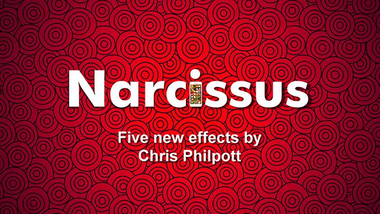 Narcissus - magic