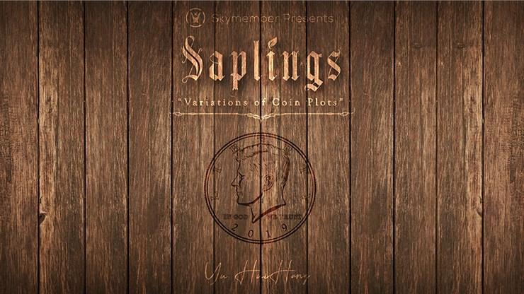 Skymember Presents Saplings - magic