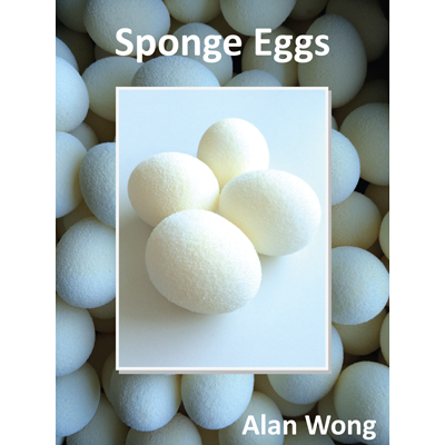 Sponge Eggs (4 pack) - magic