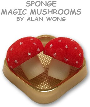 Sponge Mushrooms - magic