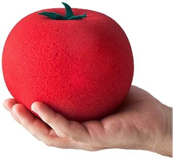 The Incredible Growing Sponge Tomato - magic