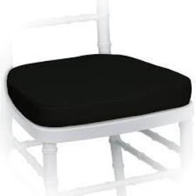 Whoopee Seat Cushion - magic