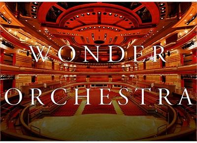 Wonder Orchestra - magic