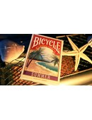 Bicycle Four Seasons Limited Edition Summer Playing Cards Deck of cards