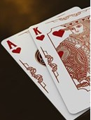 Bicycle Syndicate Playing Cards Deck of cards