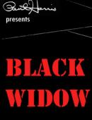 Black Widow Video