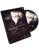 Compression DVD
