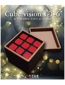 Cube Vision 1-1-6 Trick