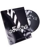 Downfall DVD