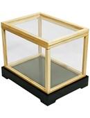 Illusion Money Box Trick