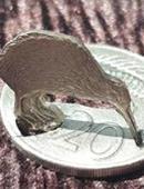 Kiwi Coin Trick
