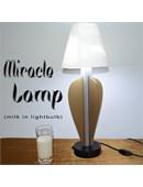 Miracle Lamp Trick