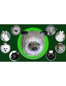 Silver Fox Spring Animal Accessory