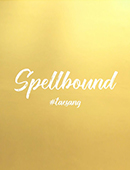 Tae Sang's Spellbound Magic download (video)