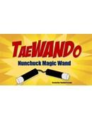 TaeWando Trick