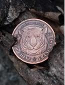 Tiger Tan Trick