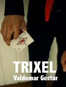 Trixel Magic download (video)