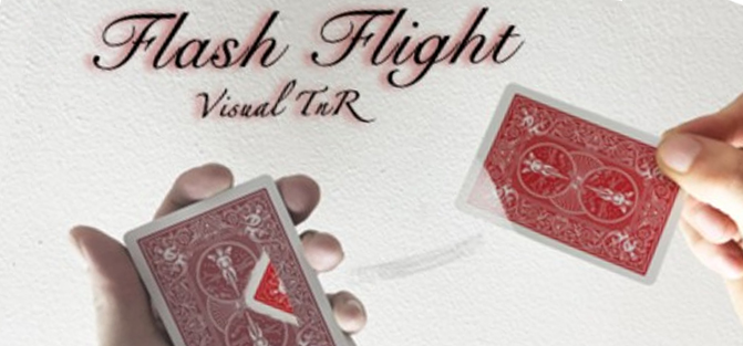 Flash Flight (Download)